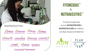 ADN Banner 1 (BIAproductos)